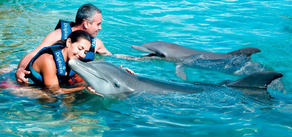 Ixtapa delfin