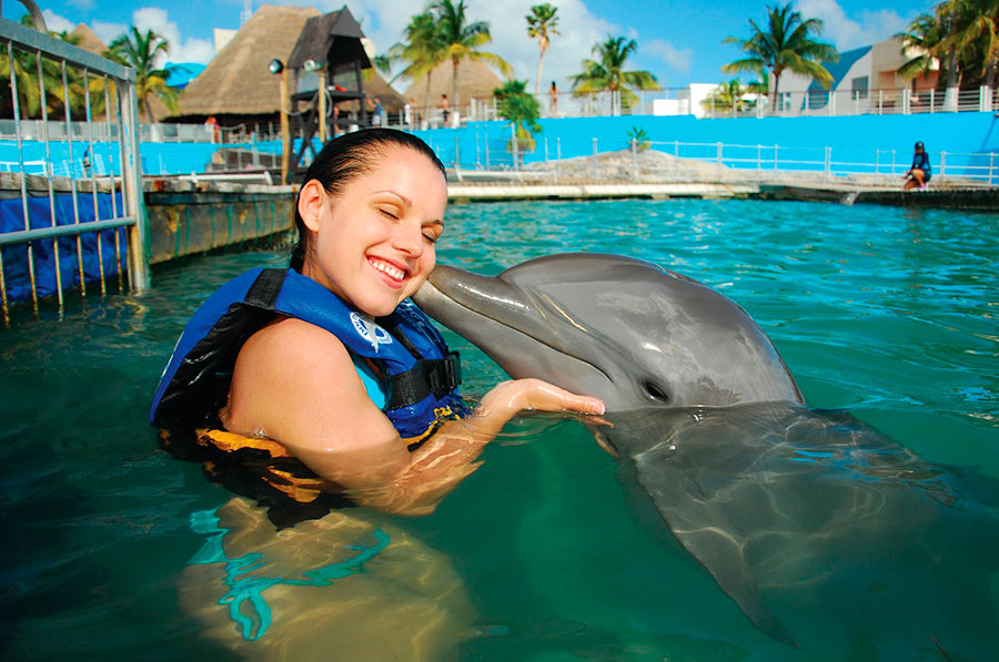 ixtapa-delfines