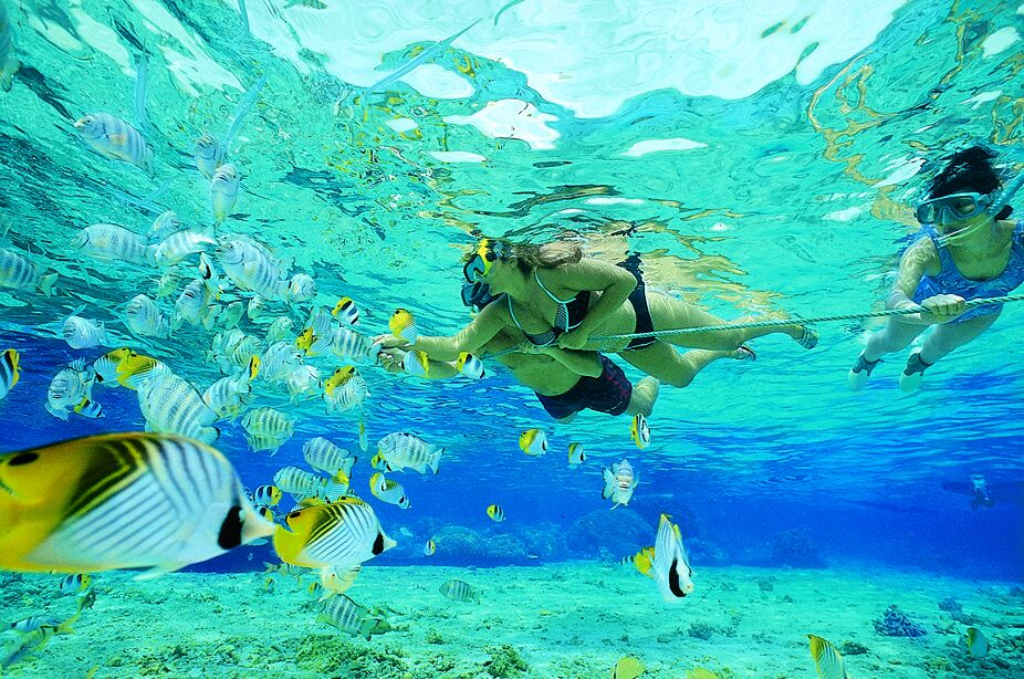 playa-del-carmen-snorkel